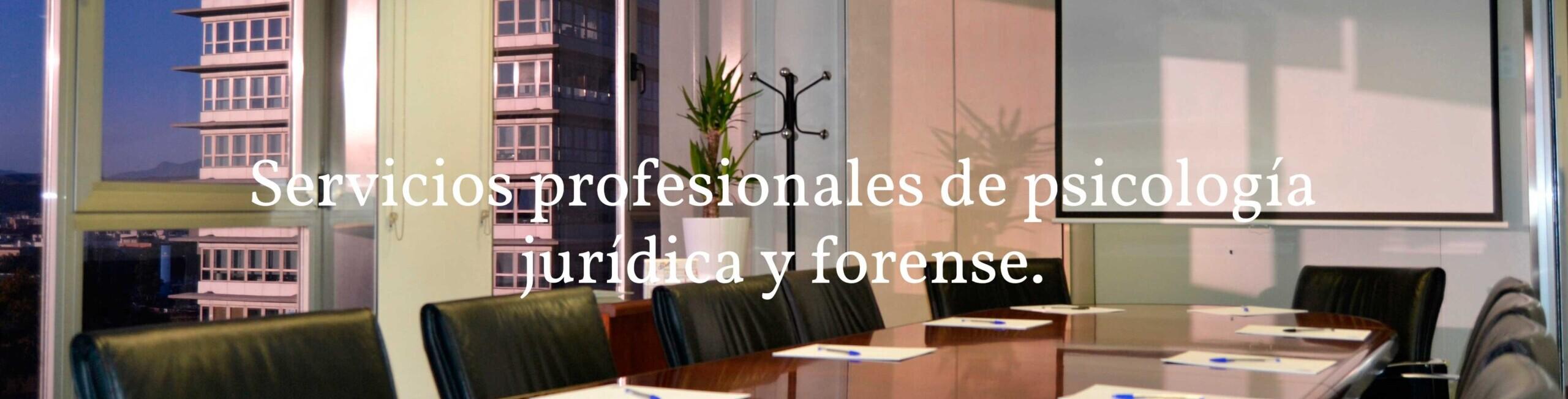 Servicios profesionales de Psicología Jurídica y Forense en Murcia